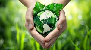 Новый экологический сертификат!